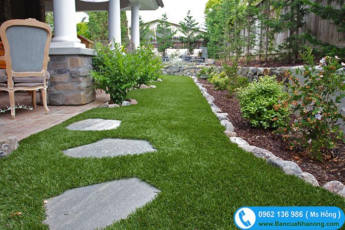cỏ tiểu cảnh sân vườn
